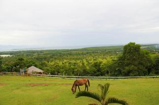 Mitra's Ranch