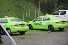 Green Taxis!