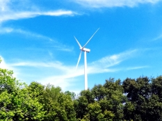 The entire Guimaras Island is powered by the wind turbines.