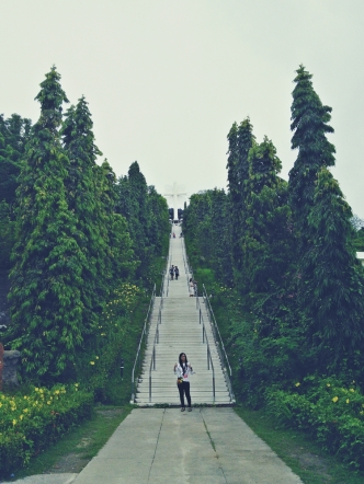 iloilo_garinfarm_steps