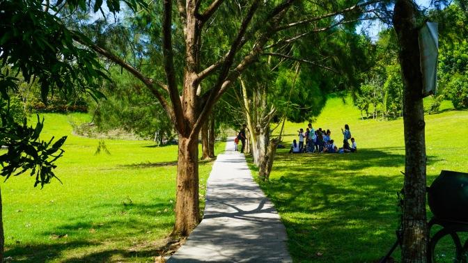 12 Kawa Walk