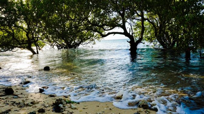 31 Paguriran Beach