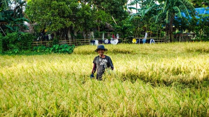 34 Paguriran Farmer